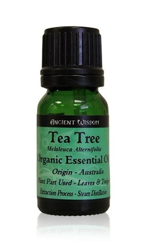 Ulei esential organic de Tea Tree (Melaleuca Alternifolia), 10ml - Ancient Wisdom