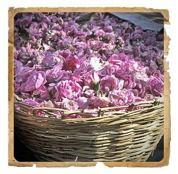 Pudra de Trandafir de Damasc, 100 g - Erbe di Janas