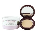 Corector rezistent la transfer, Peach Bisque - 100 Percent Pure Cosmetics