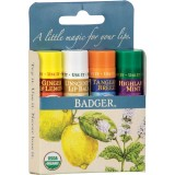 Set 4 balsamuri clasice de buze, Blue Kit - Badger